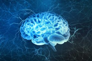 zentrales Nervensystem Säugling